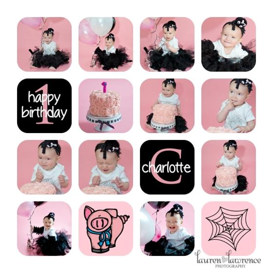 Charlottes Web Cake Smash Toronto Baby Photographer
